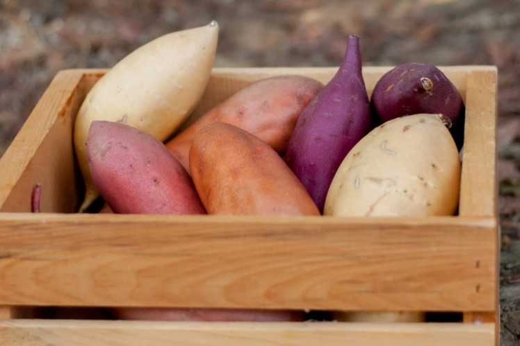 Images of sweet potatoes