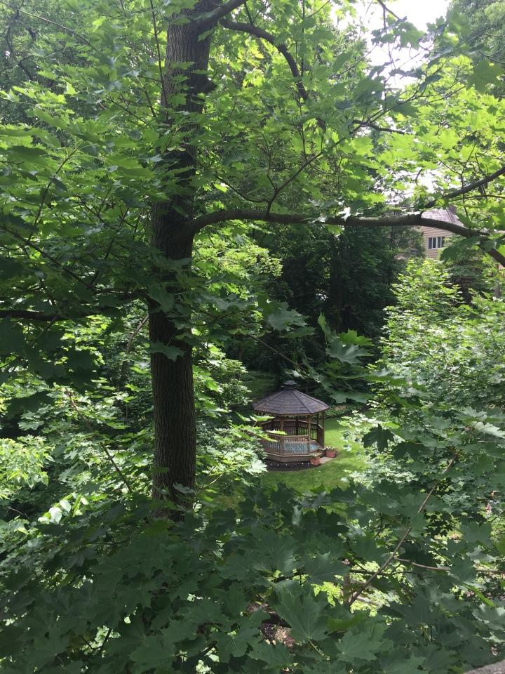 Pagoda in a yard