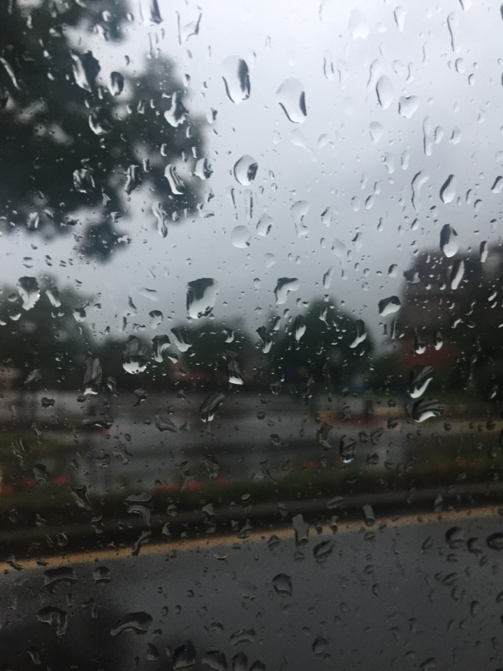 Rain droplets on windshield